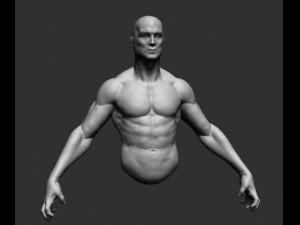 Male Upper Body 02