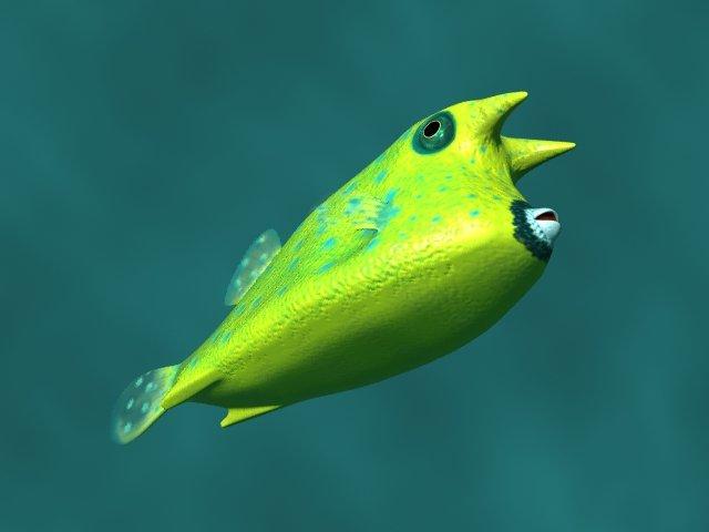Boxfish Free 3D Model in Fish 3DExport