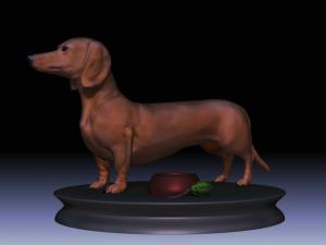 Realistic Dachshund Model