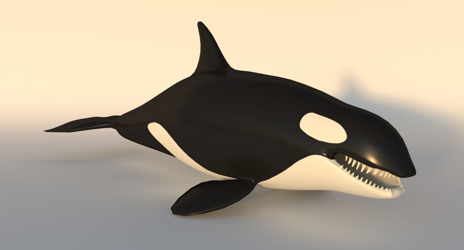 killer whale orca 3d model in aquatic 3dexport