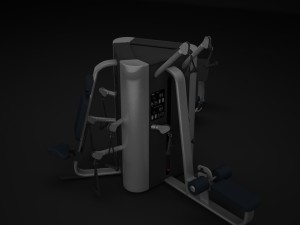 Multistation Gym TOWER 2
