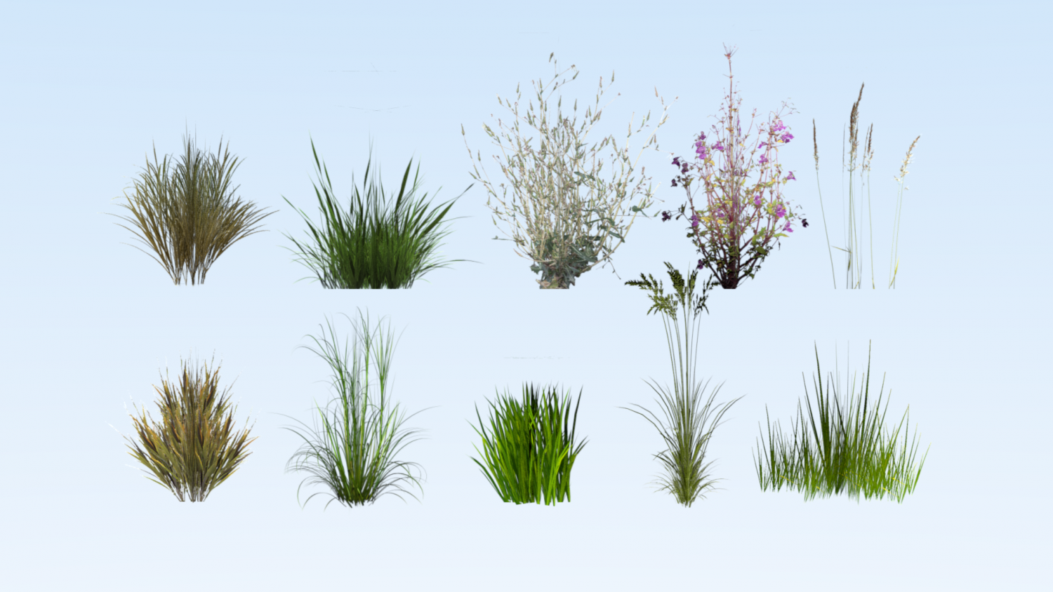 Lowpoly Grass Pack 3d Model In Grass And Ground Cover 3dexport
