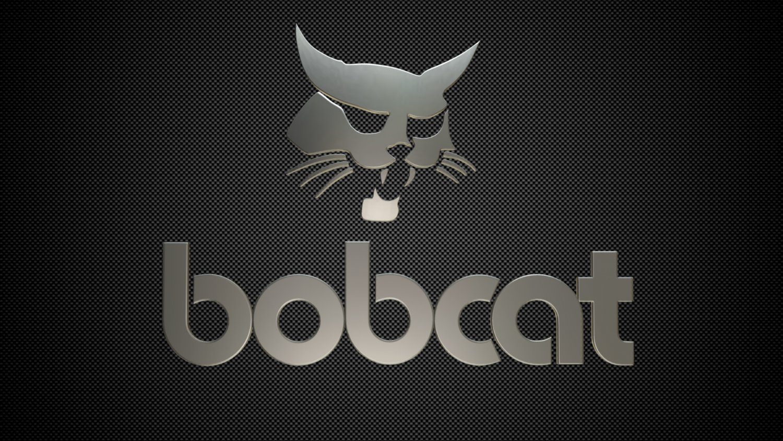 Bobcat logo 3D Model in Parts of auto 3DExport