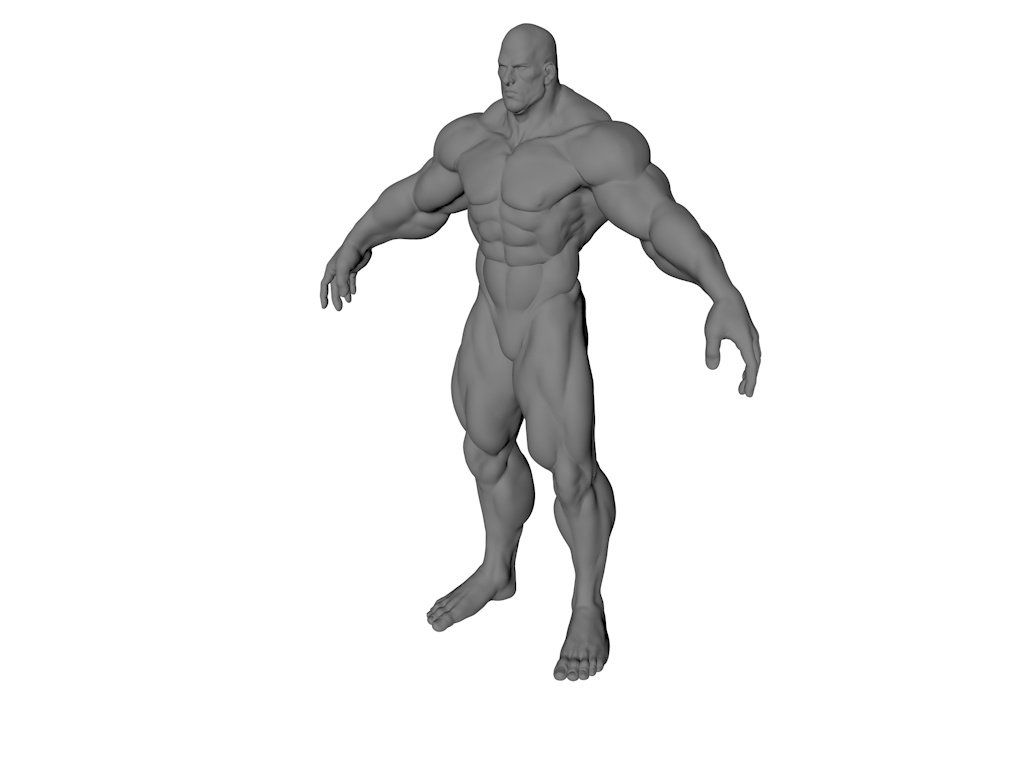 Muscle Man Free 3D Model in Anatomy 3DExport