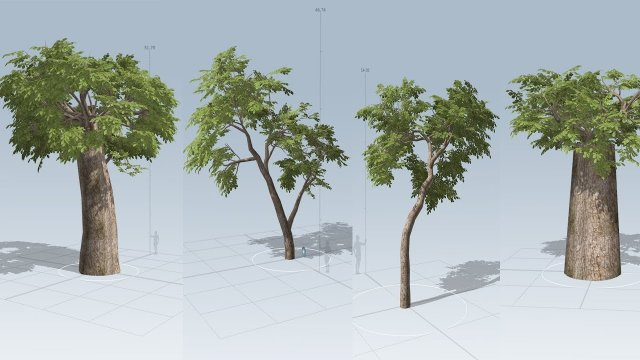 Tree Modeling in SpeedTree Free 3D Model in Getting Started Tutorials