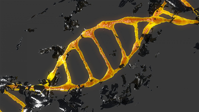 DNK 3D Model in Special Effects 3DExport