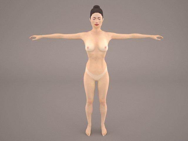 Female Anatomy 3d Model In Anatomy 3dexport