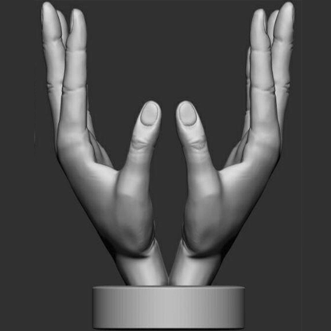 Hand face statue 3D Model in Sculpture 3DExport