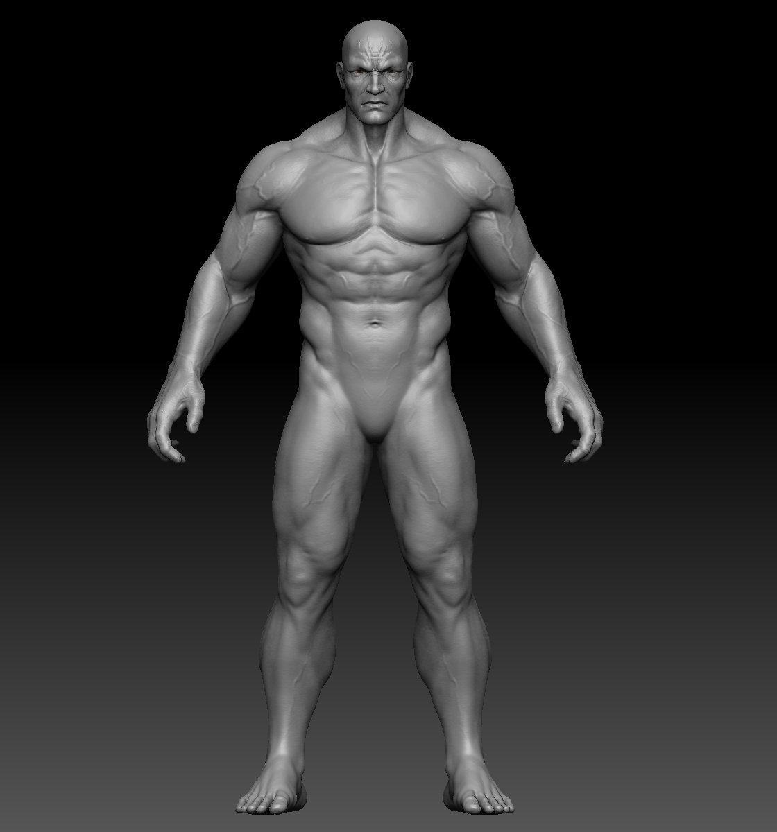 Male anatomy zbrush 3D Model in Anatomy 3DExport