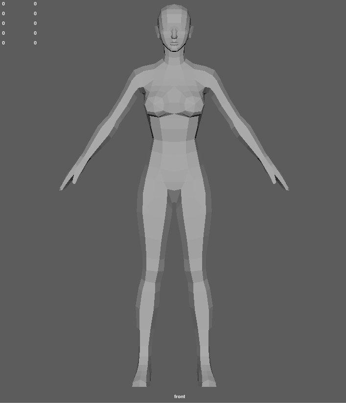 Base female 2 Modelo 3D in Anatomía 3DExport