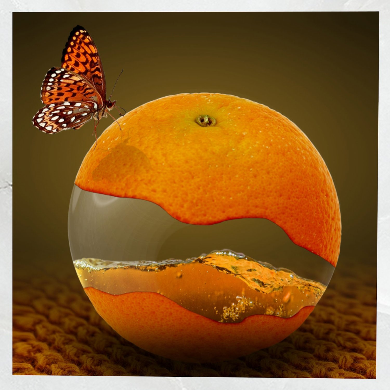 Canvas Art Surreal Orange Fruit 3d Model In Other 3dexport