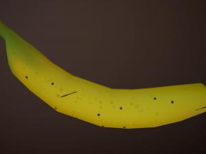 Food Free 3D Models - Download Food Free 3D Models 3DExport