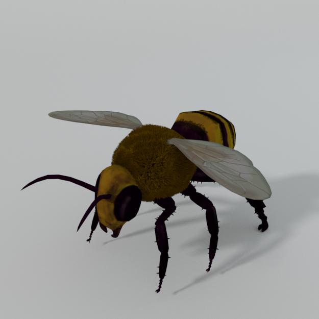 African Bee 3D Model in Insects 3DExport